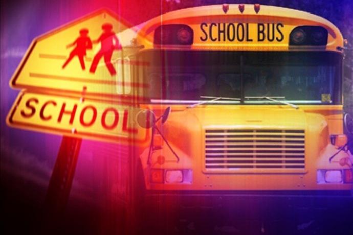 School Bus_3986788568968219635