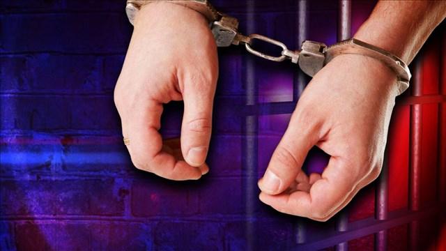 Arrest_1457497564242.jpg