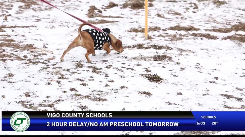Pets Cold Weather 12-14-16