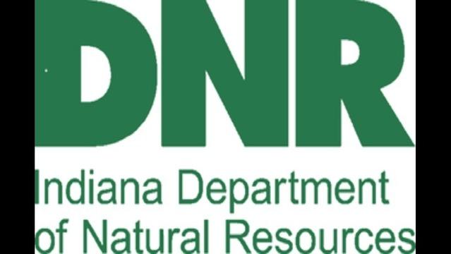 DNR Logo_1492449463735.jpg