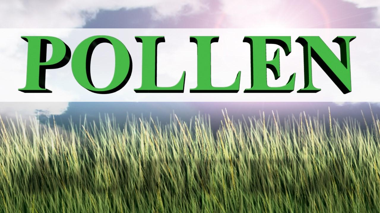 POLLEN COUNT_1493151578910.jpg