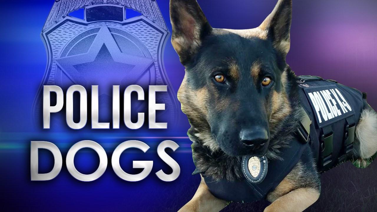 POLICE DOG OTS_1496700599990.jpg