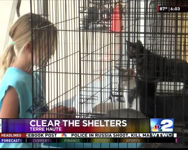 Clear the Shelter 8-19-17