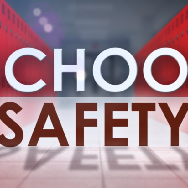 SCHOOL SAFETY_1521577444594.jpg.jpg
