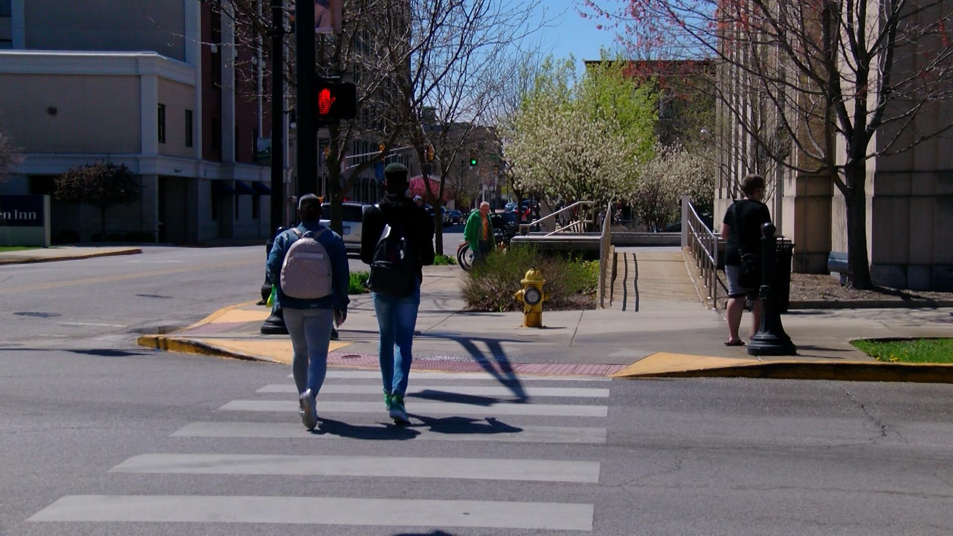 pedestrian_1524778629876.jpg