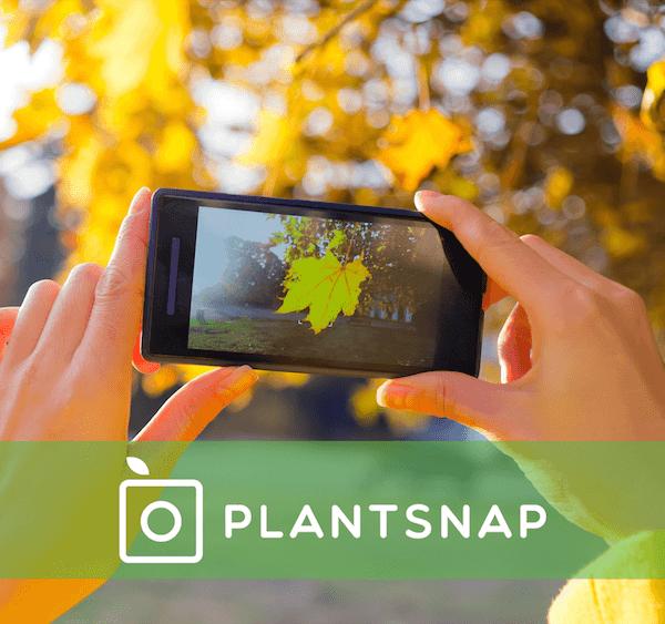 PlantSnap-App_1529792444061.png