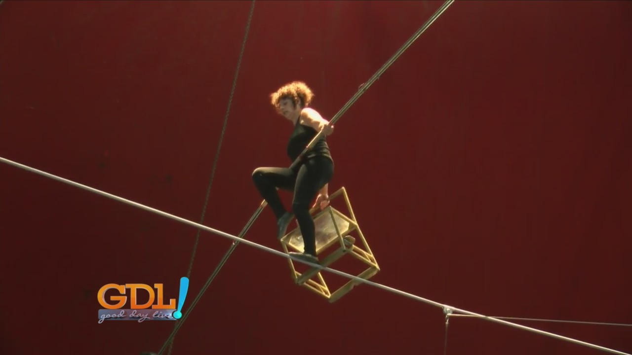 Good Day Live, Zorah Shrine Circus