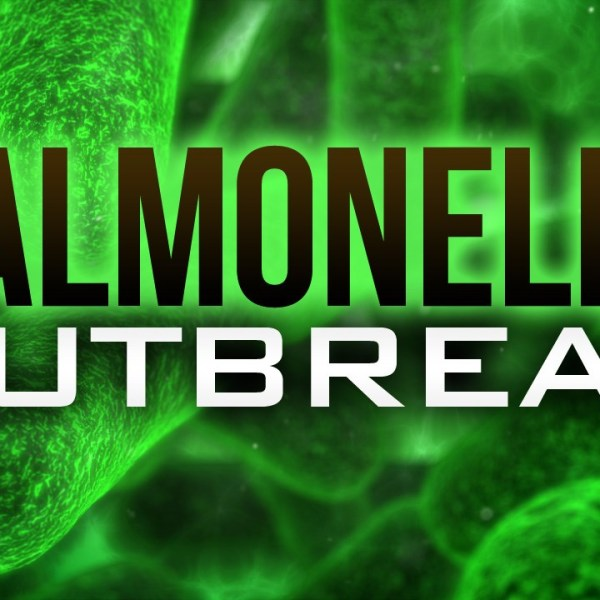 salmonella outbreak_1539807044422.jpg.jpg