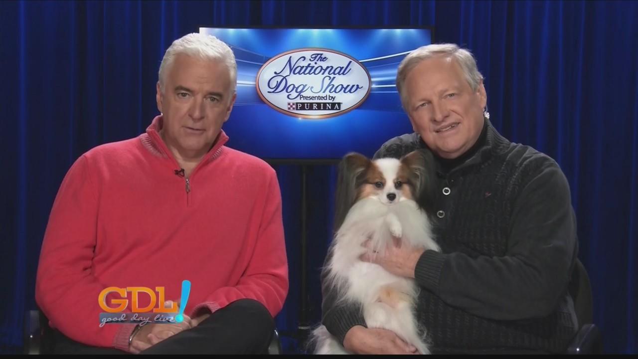 Good Day Live,  National Dog Show