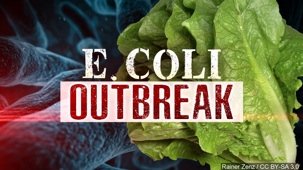 romaine lettuce e coli_1542745891594.jpg.jpg