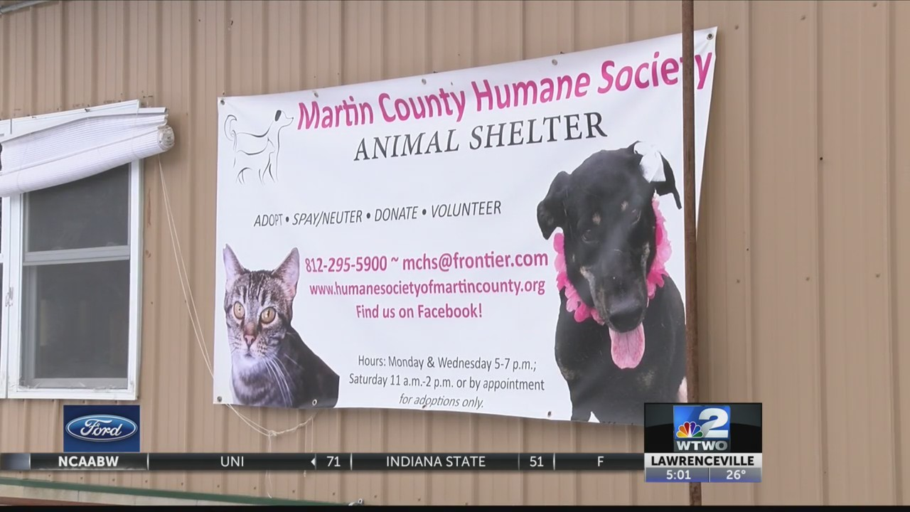 Four_dogs_rescued_from_puppy_mill_die_du_0_20190128005329