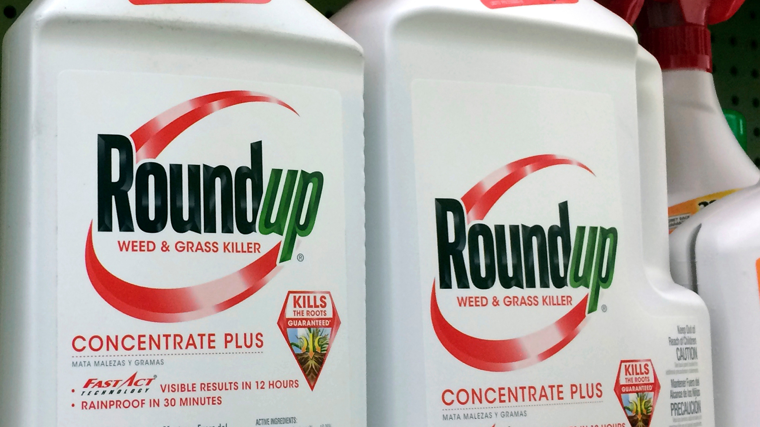 Roundup_Weed_Killer_Cancer_14698-159532.jpg45358393