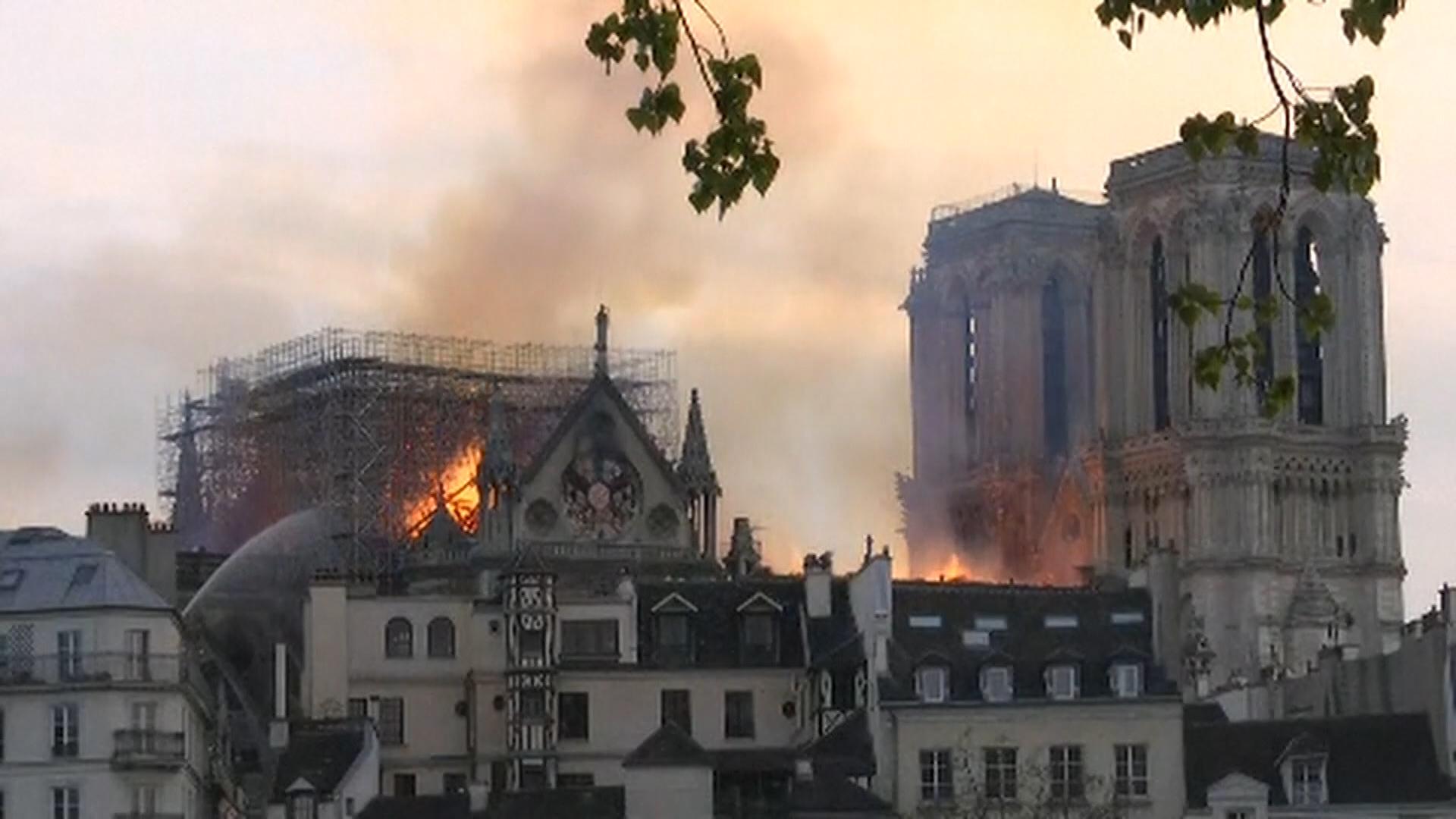 Notre Dame 1_1555385412709.jpg.jpg