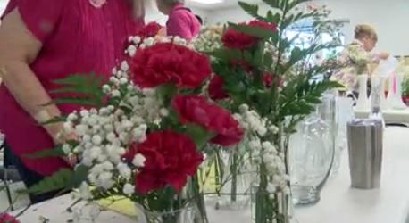 pink carnations 2_1557434064555.jpg.jpg