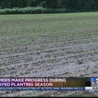 Farmers Planting