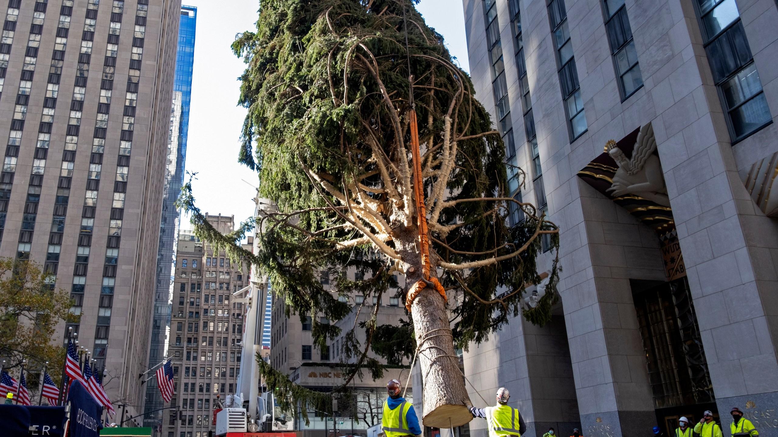 Rockefeller Christmas Tree 2020 December 8 2020 Went Dark Rockefeller Center Christmas tree goes up; lighting Dec. 2
